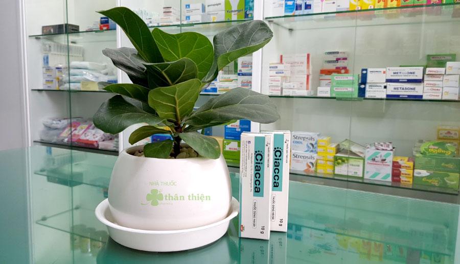 Thuốc Ciacca đang được bán chính hãng ở hầu hết các nhà thuốc