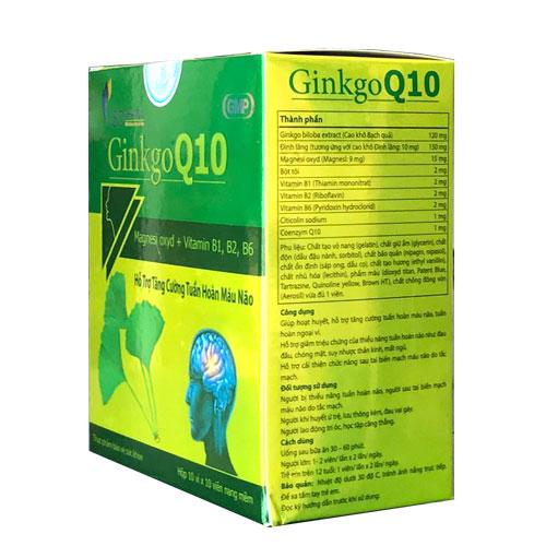 Thành phần Ginkgo Q10