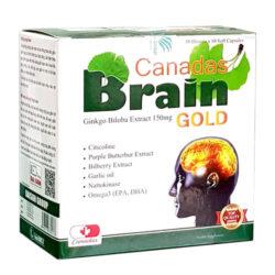 Hộp Canadas Brain Gold