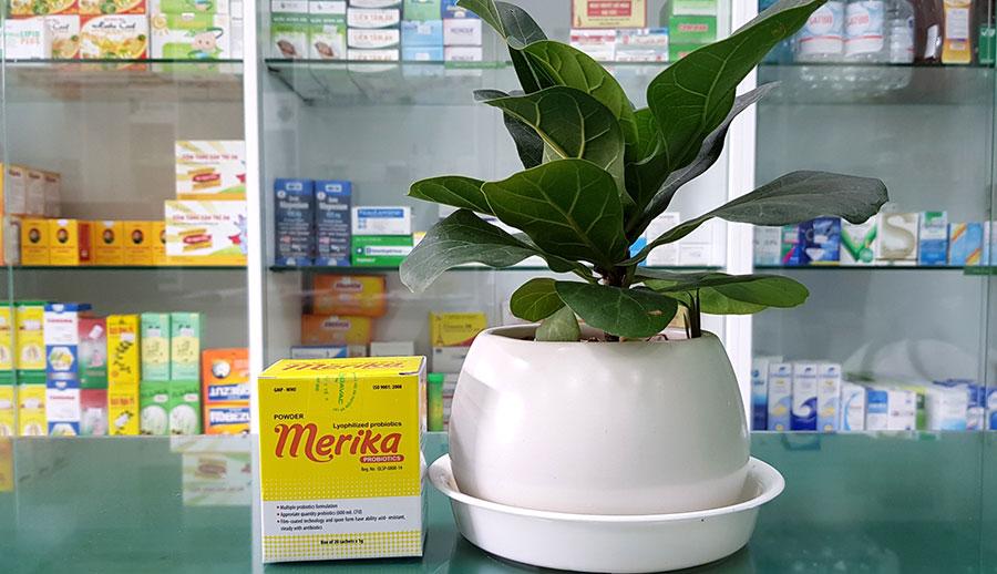 Hình ảnh Merika chụp tại nhà thuốc!