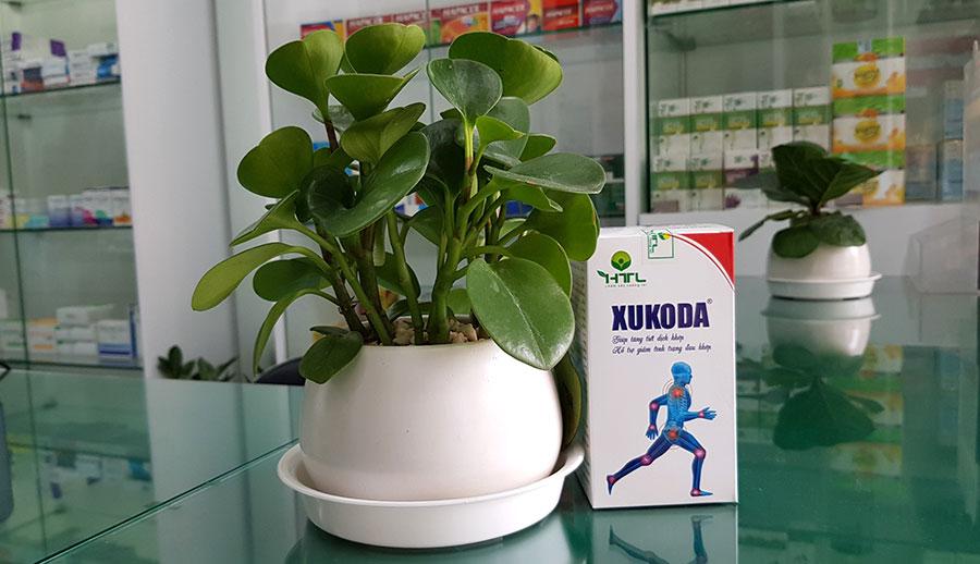 Hình chụp sản phẩm Xukoda tại nhà thuốc!