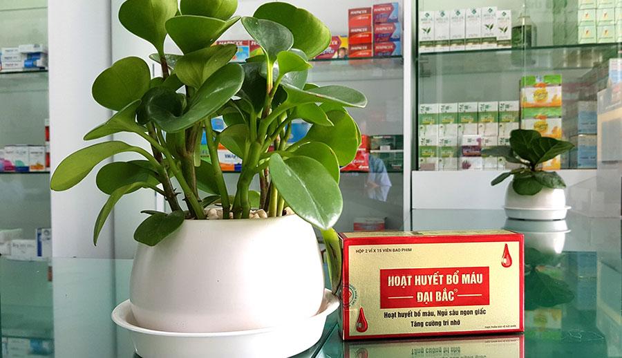 Hình chụp Hoạt Huyết Bổ Máu Đại Bắc tại nhà thuốc!