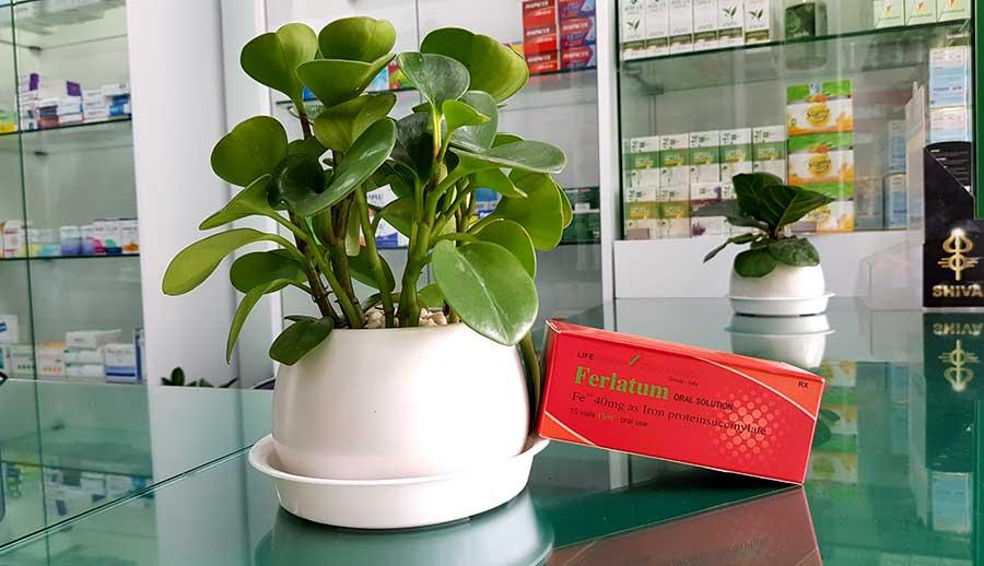 Hình ảnh Ferlatum chụp tại nhà thuốc Thân Thiện1