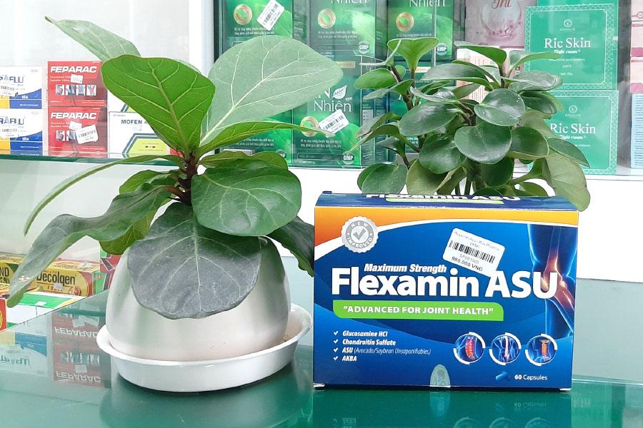 Flexamin ASU, tăng khả năng tái tạo và nuôi dưỡng mô sụn khớp