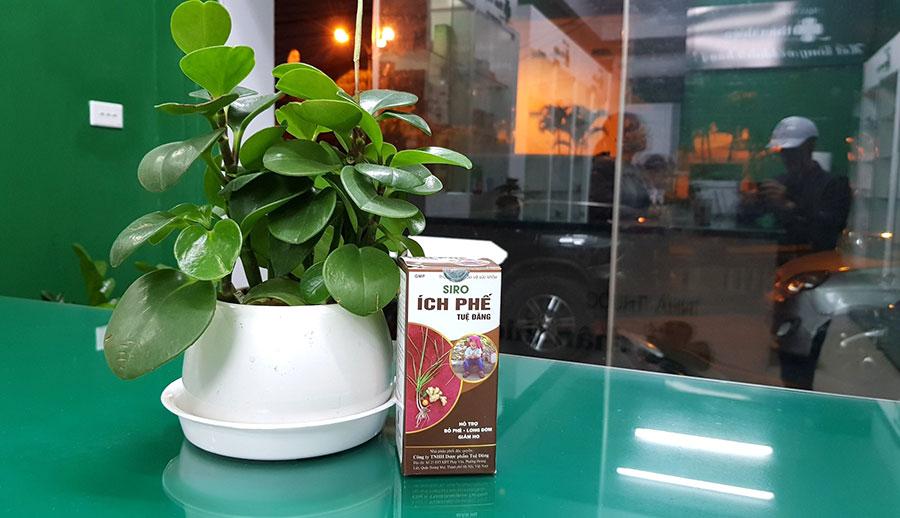 Hình ảnh: Sản phẩm Siro ích phế Tuệ Đăng tại nhà thuốc Thân Thiện
