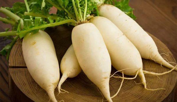 Củ cải, trị các bệnh về đường hô hấp, trị ho lâu ngày và bụng đầy trướng