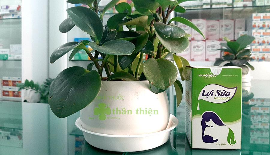 Lợi sữa Nanogold có bán chính hãng tại nhà thuốc Thân Thiện (hàng điểm)