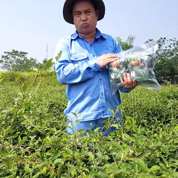 CEO Phan Trung Kiên