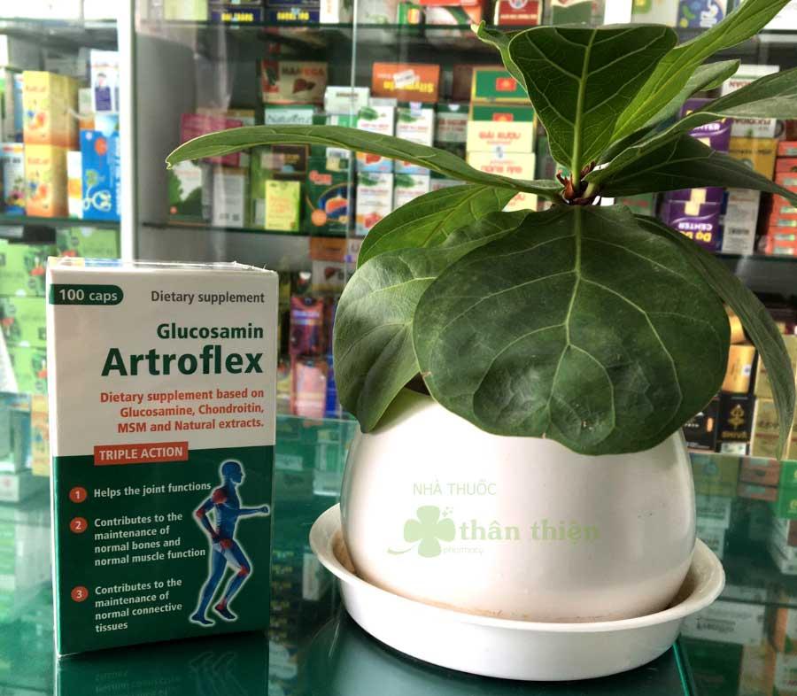 Glucosamin Artroflex, hỗ trợ các trường hợp thoái hóa khớp, khô khớp, viêm khớp