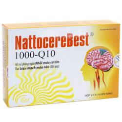 Nattocerebest 1000-Q10