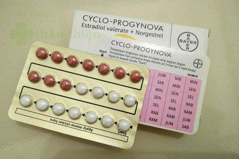 Cyclo Progynova, trị thiếu estrogen, ngăn ngừa loãng xương, trị vô kinh