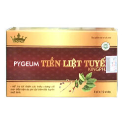 Pygeum Tiền liệt tuyến Kingphar