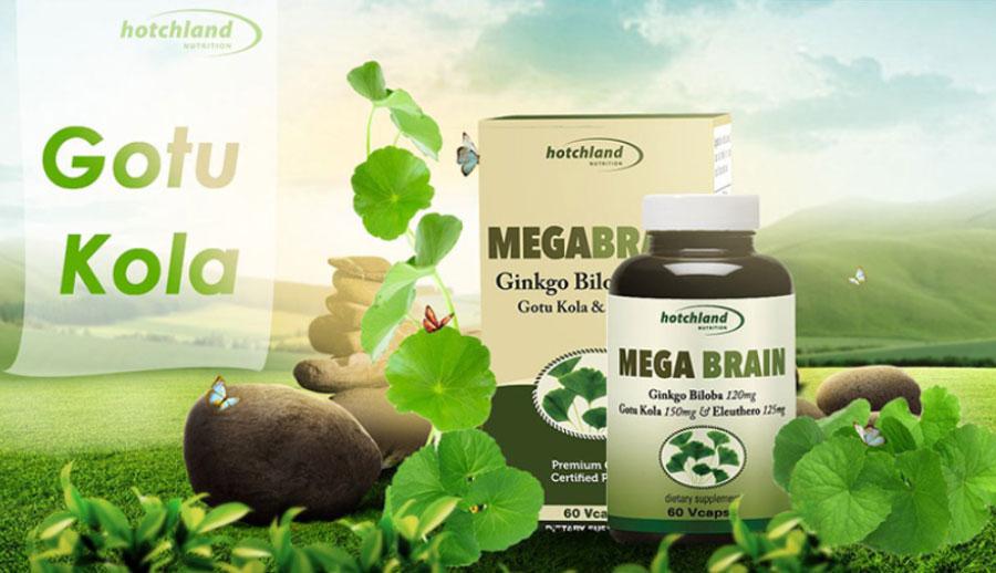 Viên uống MegaBrain, hỗ trợ làm giảm triệu chứng hoa mắt, chóng mặt, suy giảm trí nhớ
