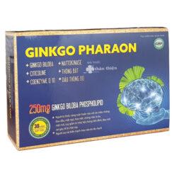 Ginkgo Pharaon